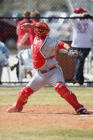 March 15, 2010:  Catcher Billy Ribeiro of the Cortland Red Dragons in a game vs Wheaton College at Lake Myrtle Park in Auburndale, FL.  Photo By Mike Janes/Four Seam Images