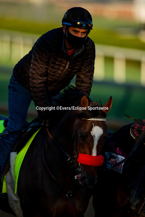 April 26, 2021: Hot. Rod Charlie is ponied by Lava Man as he prepares for the Kentucky Derby at Churchill Downs in Louisville, Kentucky on April 26, 2021. EversEclipse Sportswire/CSM