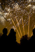 Queen's Park Gardens annual firework display, organised by Queens Park Neighbourhood Forum