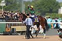 Horse Racing: Yushun Hinba