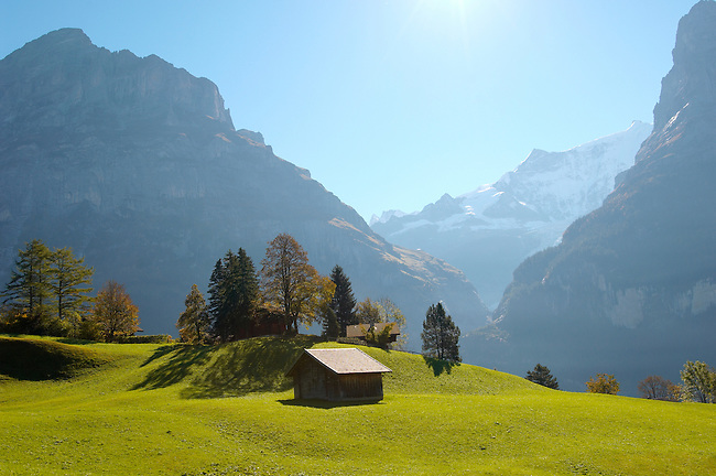 Alpine Pasture with cow shed - Grinderwald - Alps - Switzerland