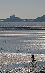 Swansea, UK, 25th March 2020.<br />A man walks his dog on the beach as people get their hit of daily excercise during the Coronavirus lockdown in the stunning spring weather at Mumbles near Swansea this afternoon.