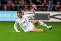 Saturday, 03 November 2012<br /> Pictured: Michu of Swansea<br /> Re: Barclays Premier League, Swansea City FC v Chelsea at the Liberty Stadium, south Wales.