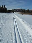 Fresh tracks, .Winter, Cross Country Trails.Mount Washington Hotel.Bretton Woods, New Hampshire..... .