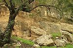 Israel, Jerusalem Mountains, rock formations in Ein Kfira