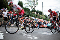 Luis Angel Mate (ESP/Cofidis) up the infamous Mur de Huy<br /> <br /> 83th Flèche Wallonne 2019 (1.UWT)<br /> 1 Day Race: Ans – Huy 195km<br /> <br /> ©kramon