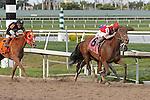 March 28, 2015:  #8 Birdatthewire (KY)  with jockey Irad Ortiz, Jr on board, wins the Gulfstream Park Oaks G2 on Florida Derby Day at Gulfstream Park  in Hallandale Beach, Florida.    Liz Lamont/ESW/CSM