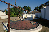 jbo11517 renewables green Energy environment climate biogas biomass energy from buffalo and cow dung for biogas plant in village India southasia gobergas.Umwelt Klimaschutz erneuerbare alternative Energie aus Kuhdung für Biogasanlage zum Kochen und Heizen in Dorf Indien Südasien.copyright Joerg Boethling / agenda