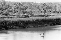 """Ethiopia. South Omo Zone. Salamago district. A boat on the Omo river. The flood crop is planted on narrow silt berms along the banks of the omo river in september and october, and harvested in december and january. mostly sorghum. Mursi tribe. Agro-pastoralist group. Nomadic. Mursi women are known as """"disk-lip"""" women. The bottom lip is slit along its full length and the front bottom row of teeth are pulled out to accomodate the ceramic disk  which is handmade with a rim around which the stretched lip is pulled. The disk is seen as a symbol of beauty and wealth, and often the younger girls will pierce and strech their ear-lobes, inserting a matching disk in the extended lobe. Flood-retreat cultivation. The Mursi tribe is located in the Debub Omo Zone (South Omo Zone) of the Southern Nations, Nationalities and Peoples's région. © 2001 Didier Ruef"""