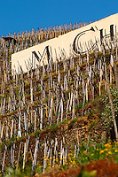 Detail of a sign saying M Chapoutier. Terraced vineyards in the Cote Rotie district around Ampuis in northern Rhone planted with the Syrah grape. Ampuis, Cote Rotie, Rhone, France, Europe