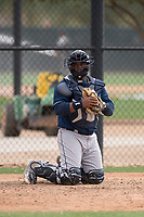 Cleveland Indians catcher Jose Vicente (27) during a Minor League Spring Training game against the Chicago White Sox at Camelback Ranch on March 16, 2018 in Glendale, Arizona. (Zachary Lucy/Four Seam Images)