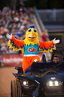 The San Diego Chicken, also known as the Famous Chicken or just The Chicken, is escorted onto the field between innings of the Fall Stars game at Surprise Stadium on November 3, 2018 in Surprise, Arizona. The AFL West defeated the AFL East 7-6 . (Zachary Lucy/Four Seam Images)