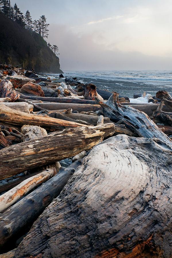 Driftwood logs, Ruby Beach, Olympic National Park, Jefferson County, Washington, USA
