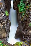 N.A., Canada, Alberta, Jasper NP, Malign Canyon