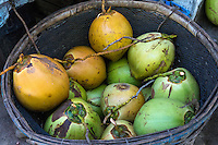Bali, Indonesia.  Fresh Coconuts Waiting to be Opened as a Refreshment.