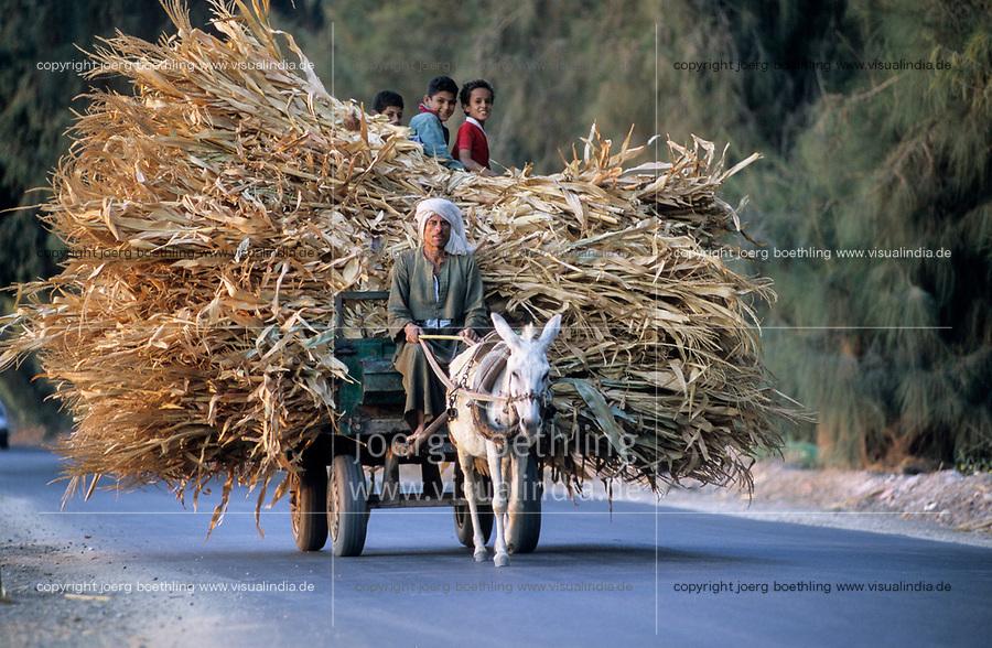 EGYPT, El Minya, coptic christians , farmer with donkey cart / AEGYPTEN, El Minia, koptische Christen , Bauer mit Eselskarren