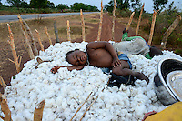 BURKINA FASO, village Soumousso, cotton harvest, children transport harvested cotton with donkey cart to their village, exhausted children sleep in cotton fibre / Baumwolle Ernte, Kinder transportieren Baumwolle mit einem Eselkarren vom Feld in ihr Dorf, erschoepfte Kleinkinder schlafen in der Baumwolle
