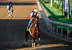 April 27, 2021: Highly Motivated, trained by trainer Chad Brown, exercises in preparation for the Kentucky Derby at Churchill Downs on April 27, 2021 in Louisville, Kentucky. John Voorhees/Eclipse Sportswire/CSM