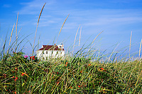 Beach house with dune grass, Cape Cod, Massachusetts, USA