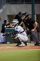 Norfolk Tides catcher Adley Rutschman (36) sets a target as home plate umpire Jonathan Parra looks on during the game against the Charlotte Knights at Truist Field on August 19, 2021 in Charlotte, North Carolina. (Brian Westerholt/Four Seam Images)