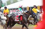 May 16, 2015: Post parade: #1 Fame and Power, Martin Garcia up, wins the Sir Barton Stakes at Pimlico Race Course in Baltimore, MD. Trainer is Bob Baffert; owner is Juddmonte Farm. Joan Fairman Kanes/ESW/CSM