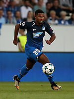 Serge Gnabry (Hoffenheim)<br />