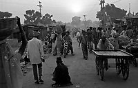 11.2008  Pushkar (Rajasthan)<br /> <br /> End of the day in the camel camp during the annual fair.<br /> <br /> Fin de journée pendant la foire annuelle.