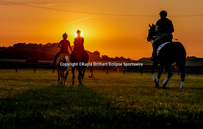November 8, 2021: Scenes from the Eclipse Sportswire Photo Workshop at Kentucky Downs in Franklin, Kentucky, photo by Kayla Brilhart/Eclipse Sportswire Photo Workshop