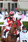 March 27 2021: RB MONEY TO BURN #13, in the post parade for the Dubai Kahayla Classic at Meydan Racecourse, Dubai, UAE. Shamela Hanley/Eclipse Sportswire/CSM
