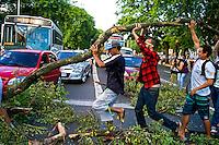 Manifestaçao contra corte de arvores pela Prefeitura de Porto Alegre. Rio Grande do Sul. 2013. Foto de Luiz Abreu.