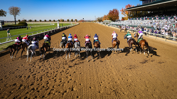 Knicks Go (#5, Paynter) wins the BC Dirt Mile at Keeneland 11.07.20. Winning Owner: Korea Racing Authority, Winning Trainer: Brad H. Cox