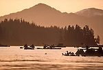 Alaska, Prince William Sound, sea kayaking, National Outdoor Leadership School, NOLS, spring wilderness course, Knight Island Passage,