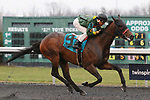 March 14, 2020 : #9 Bango and jockey Rafael Bejarano win the 34th running of The Mayers Electric Company Animal Kingdom Stakes (BT) $75,000 for owner Tamaroak Partners and trainer Gregory Foley at Turfway Park in Florence, KY on March 14, 2020.  Candice Chavez/ESW/CSM