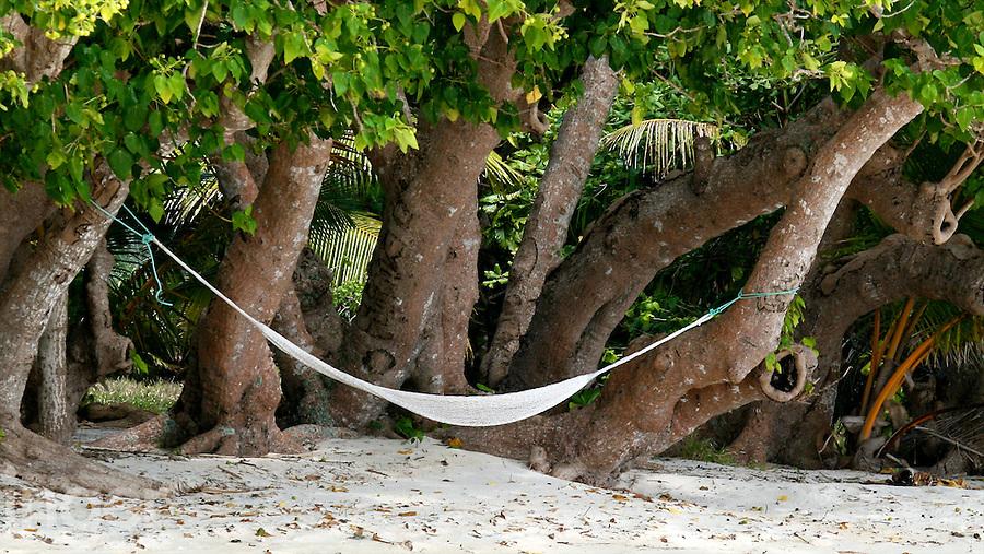Hammock on the beach in Tonga
