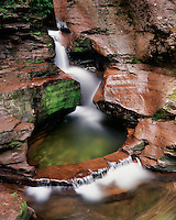 Adams Falls in early summer; Ricketts Glen State Park, PA