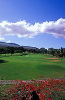 Hole No. 8 of the Wailea Blue golf course on Maui