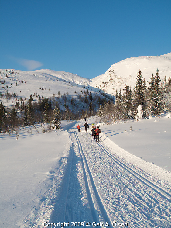 Winter at Norefjell in the Norwegian mountains at christmas