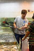 Fischhändler in Kowloon, Hongkong, China<br /> Fish dealer in Kowloon, Hongkong, China