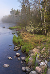 Misty morning on the East Fork of the Chippewa River in northern Wisconsin.
