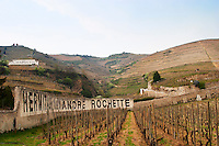 Close to the town a vineyard wall with painted in black on white Hermitage Alexandre Rochette. The Hermitage vineyards on the hill behind the city Tain-l'Hermitage, on the steep sloping hill, stone terraced. Sometimes spelled Ermitage. View up towards the Hermitage hill. Tain l'Hermitage, Drome, Drôme, France, Europe