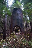 Limekiln, Limekiln State Park, Big Sur, California, US