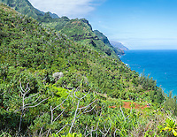 Distant hikers on the red Kalalau Trail on Kaua'i.