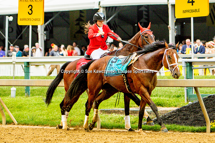 MAY 18, 2019 : Bodexpress looses his rider and run loose in the 144th running of the Preakness Stakes at Pimlico Racecourse, on May 18, 2019 in Baltimore, MD.  Sue Kawczynski_ESW_CSM