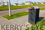 Picture's of overflowing bins and overgrown grass at the entrance to Ashgrove Estate and adjoining Liosarda Estate in Listowel.