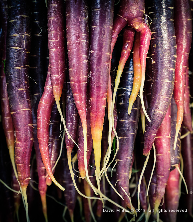 11.14.18 - Carrots of a Different Sort....