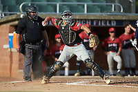 Deep River Muddogs catcher Elijah Hunt (6) (Uncommitted) in action against the High Point-Thomasville HiToms at Finch Field on June 27, 2020 in Thomasville, NC.  The HiToms defeated the Muddogs 11-2. (Brian Westerholt/Four Seam Images)