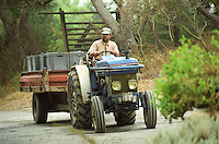 Tractor and vineyard worker bringing in crates with grapes at the harvest, Domaine Pech-Redon, Coteaux du Languedoc la Clape, Narbonne, Herault, Languedoc-Roussillon, France