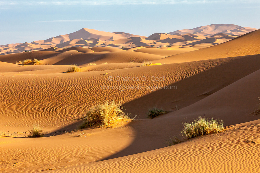 Merzouga, Morocco.  Sand Dune