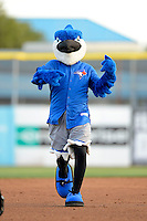 Dunedin Blue Jays mascot on field promotion base race during a game against the Tampa Yankees on April 11, 2013 at Florida Auto Exchange Stadium in Dunedin, Florida.  Dunedin defeated Tampa 3-2 in 11 innings.  (Mike Janes/Four Seam Images)