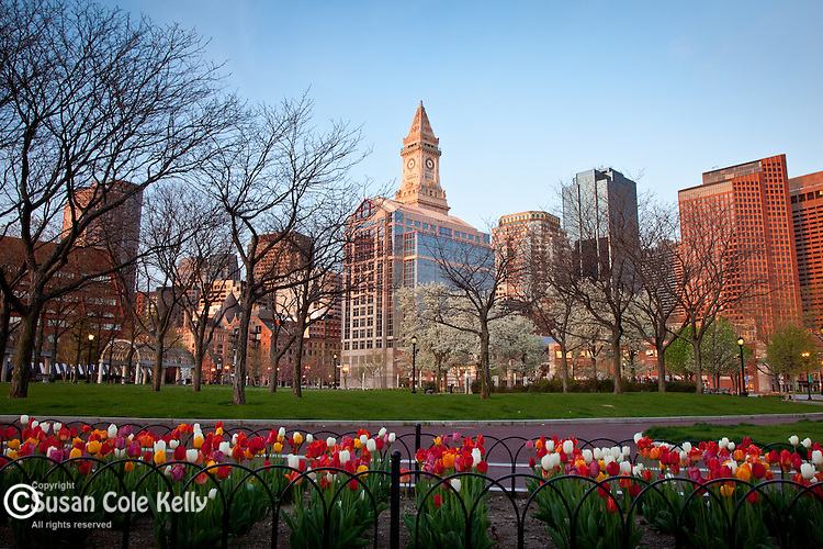 A spring sunrise in Christopher Columbus Waterfront Park, Boston, MA, USA